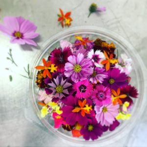 Edible flowers from Pretty Produce